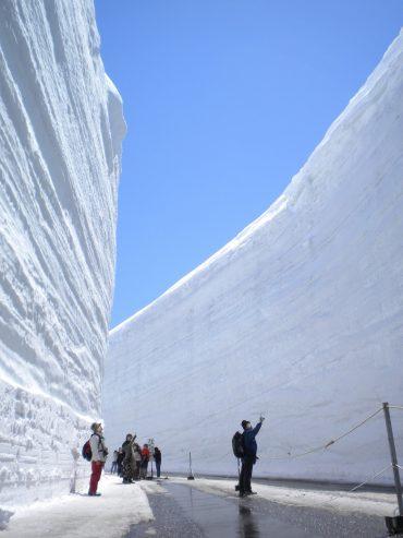 【日帰り】高さ20mの雪の壁!立山・雪の大谷ウォーク