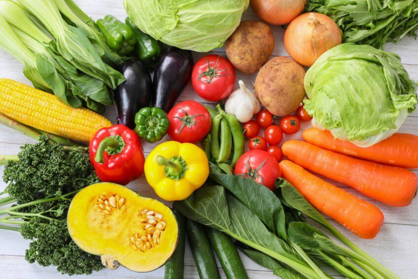 【日帰り】野菜収穫体験ツアー